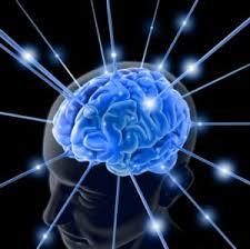 výcvik mysli